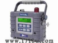 復合氣體檢測儀 SentryRAE