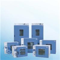 鼓風干燥箱烘箱 DHG-9123A