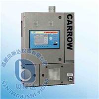 燃燒式在線熱值測量系統 Carrow2002