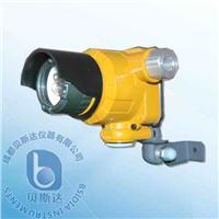 隔爆型紅紫外復合火焰探測器 BK53Ex/IR/UV