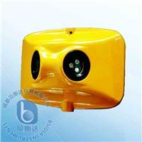 隧道专用三波长红外火焰探测器 BK51/IR3/S