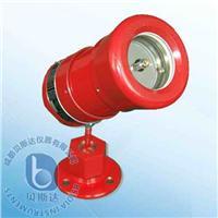 隔爆型紅外火焰探測器 BK51Ex