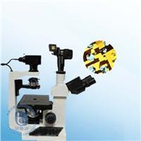 倒置式生物顯微鏡 XSP-17CZ