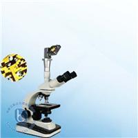 生物显微镜 XSP-12CZ