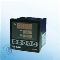 P900F系列 位置反饋比例馬達控制器 P900F系列 位置反饋比例馬達控制器