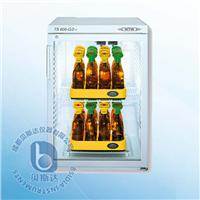 BOD培養箱(2層) TS606 (3-i)