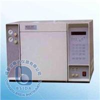 氣相色譜儀 GC-2000TCD
