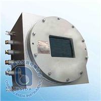 紅外線氣體分析儀 IRME-Ex