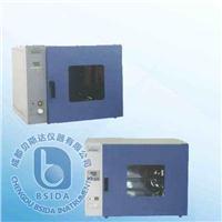 電熱恒溫鼓風干燥箱 DHG系列