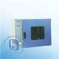 臺式電熱恒溫鼓風干燥箱 DHG系列