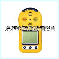 便携式气体检测仪 ACEPOM630