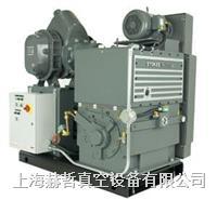 Stokes 1738 機械增壓泵組合 Stokes真空泵