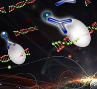 染色質免疫共沉淀