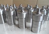 高压消解罐--LTG-10高压消解罐 LTG-10高压消解罐