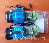 耐勵小齒輪泵 手提式單相泵 WCB-50
