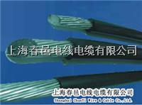 上海廠家CPU抗剪鋼絲電纜 TRVV-UTP