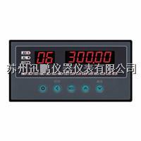 迅鹏WPLE-A08多通道温度亚洲在线仪 WPLE