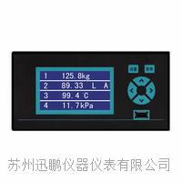压力亚洲成人社区仪(迅鹏)WPR10 WPR10