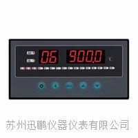 16路温度亚洲在线仪/多通道亚洲在线控制仪/迅鹏WPL16 WPL16