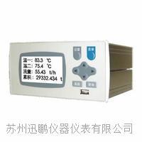 迅鹏WPR22FC-IK流量积算控制仪 WPR22FC