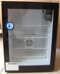 种子发芽箱 催芽箱 种子培养箱 恒温箱 可制冷恒温箱 ZF-60H