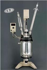 廠家直銷RV-610真空反應器 雙層夾層套式真空反應器 RV-610