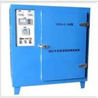 YGCH-G-100型远红外高低温程控焊条烘箱 YGCH-G-100型