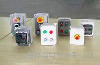 非標可定制按鈕盒