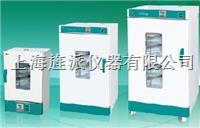 電熱恒溫鼓風幹燥箱 DHG9240B