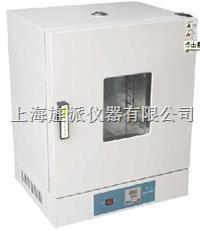 202型電熱恒溫幹燥箱