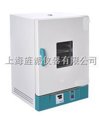 202-2S立式電熱恒溫幹燥箱 202-2S