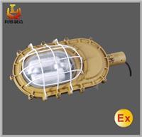 SBD1101L-YQL50 免维护节能乐虎国际APP灯 SBD1101L-YQL50