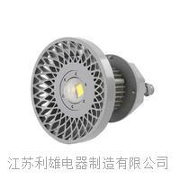 矿用隔爆型LED巷道灯-10 DGS100-127L