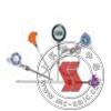 SBW,鎧裝式一體化溫度變送器 SBW