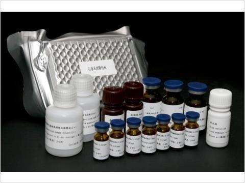 TCOX-2試劑盒,裸鼠環加氧酶2Elisa試劑盒
