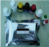 人抗胶原蛋白抗体(CLA)ELISA檢測試劑盒說明書
