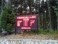国国家级评优森林公园负氧离子在线监测系检测大屏幕显示浓度值 OSEN-FY