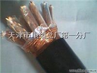 JYPV-2B 2*2*1.0電纜(計算機電纜)