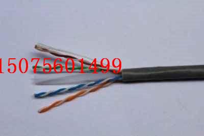 扬中市ZRA-ia-DJYPV-1*2*1.5质量保障