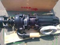 ZJQ潜水渣浆泵,潜水渣浆泵工厂