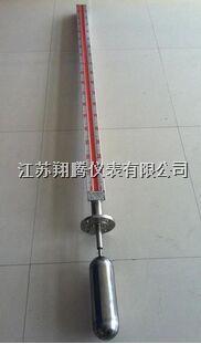 顶装式磁翻板液位計 XT-UHZ