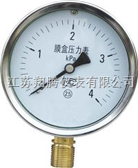 膜盒压力表 YE-100/150