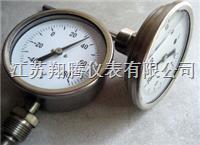 耐震双金属温度计 WSSN