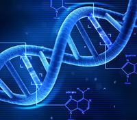 miRNA功能预测的数据分析