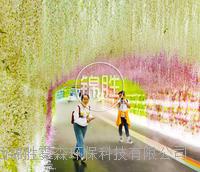 公園景區人造水霧設備 地產園林高壓噴霧景觀系統工程 陜西錦勝霧森