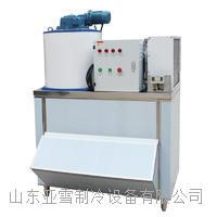 德兰雪1000公斤片冰机