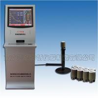 爐前鐵水成分測定儀,碳硅分析儀器 LC-TS6型