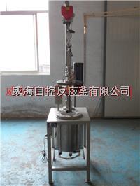 磁力反应釜_磁力搅拌高压反应釜_磁力高压釜 WHFS-10L
