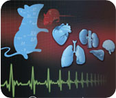 生理藥理學研究儀器