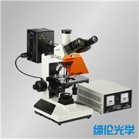 CFM-300正置落射蓝绿激发荧光显微镜 CFM-300